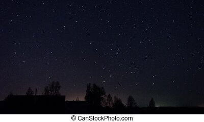 Stars Turn Through Trees, Time Laps