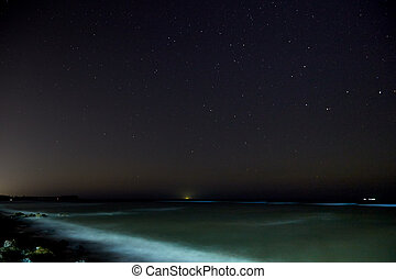 Stars with sandy beach at night