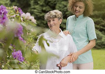 starsza kobieta, w ogrodzie, z, pielęgnować