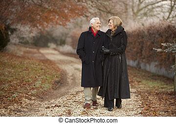 starsza para, na, zima, chód, przez, mroźny, krajobraz
