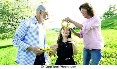 starsza para, wkładając, wnuczki, ogłówcie, mniszek...