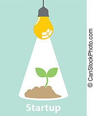 Startup - Green sprout growing from idea. Business grow and...