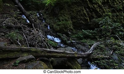 Starvation Creek Falls located at Starvation Creek Park east...