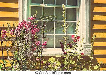 stary, chata, z, lato, ogród