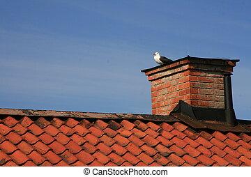 stary, dach, w, sztokholm