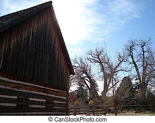 stary, drzewa, stodoła