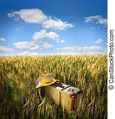 stary, walizka, z, słomiany kapelusz, w, pole
