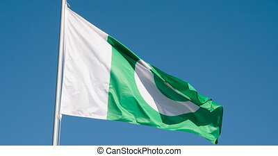 State Flag of Pakistan