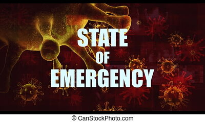 State of Emergency and Crisis Management Restrictions in Fight Against Covid-19