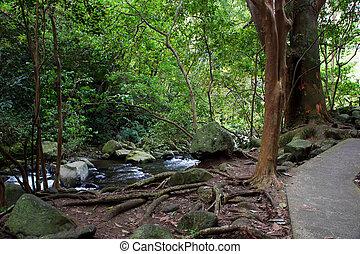 State Park Hawaii - Needle Iao Valley State Park Wailuku...