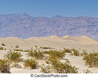 stati uniti, dune, deserto, sabbia, valle, california