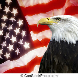 stati, unito, america