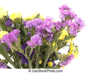 Statice flowers - Limonium Sinuatum - Bouquet of beautiful...