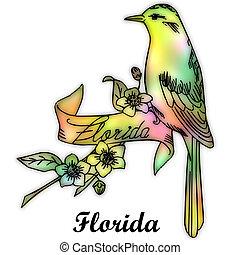 stato, uccello, florida