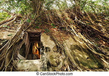 statue of golden buddha situated in the old temple under ...