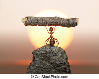 Statue of Labour, ants civilization living 150 million years...