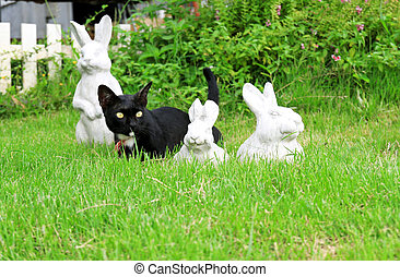 Statue of rabbit in the garden with black cat
