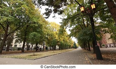 Stavropol, Russia - October 2017: Leaf fall in the park in...