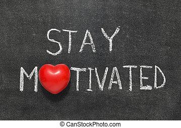 stay motivated phrase handwritten on blackboard with heart...