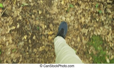 Steadicam Shot. male legs in sneakers go through the mountain wet Forest, with mossy stones and tree roots, personal perspective of view, 4k, slow motion