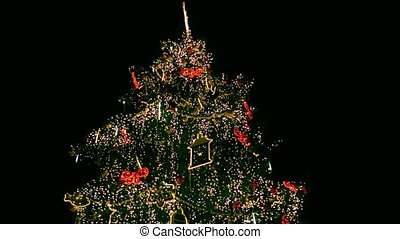 Steadicam shot of outdoor decorated and lit Christmas tree at night. 4K video