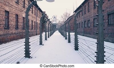 Steadicam walk between barbed wire fences. Auschwitz Birkenau, German Nazi concentration and extermination camp. Barracks in falling snow. 4K clip