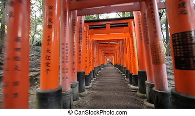 fushimi inari shrine - steadicam walking in fushimi inari...