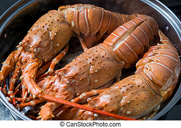 steam lobster in the iron steamer