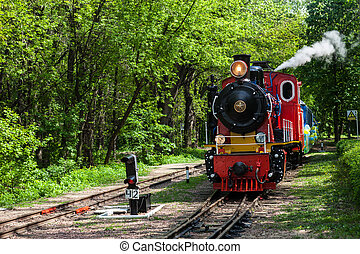 Steam locomotive going through the park and blowing off the ...