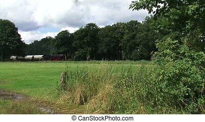 Steam train riding in countryside and whistles. Locomotive...