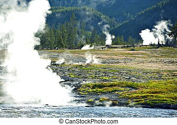 Steaming Yellowstone