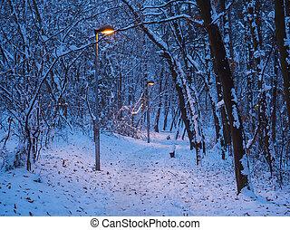 steegjes, hout, door, winter