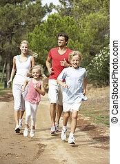 steegjes, rennende , park, gezin