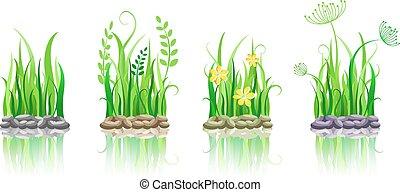 steen, gras, groene, grond