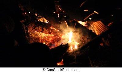 steenkolen, warme, mengen, bonfire., night.