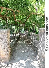 steenpad, in, groen park