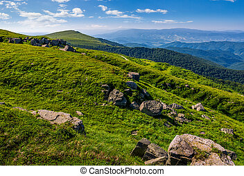 steep grassy meadow on hillside in mountains. fresh and...