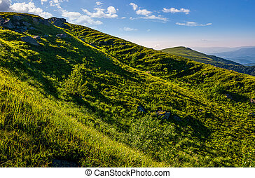 steep grassy slope in summer mountains - steep grassy slope...