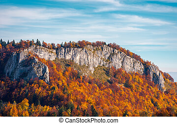 steep rocky cliff above the forest in fall colors - steep...