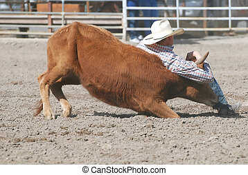 Cowboy wrestling a steer in a rodeo competition.