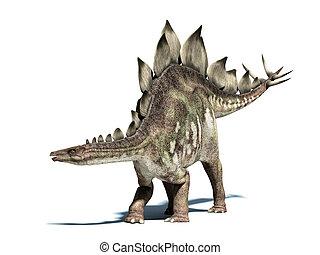 stegosaurus, dinosaur., isolado, cortando, branca, path.