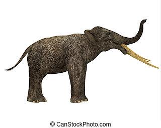 Stegotetrabelodon Side Profile