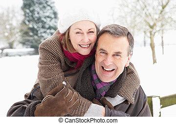 stehende , verschneiter , verkoppeln draußen, älter, landschaftsbild