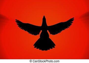 steigend, phoenix