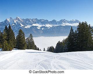 steigung, ski fahrend