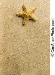 stella, spiaggia, mare