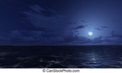 stellato, cielo notte, oceano, calma, sotto