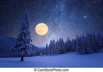 stellato, pieno, cielo, notte, inverno, luna