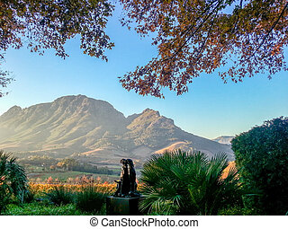 Stellenbosch, South Africa - View of the farm Hidden Valley,...