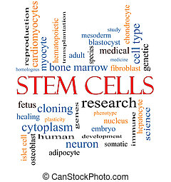 Stem Cells Word Cloud Concept with great terms such as...